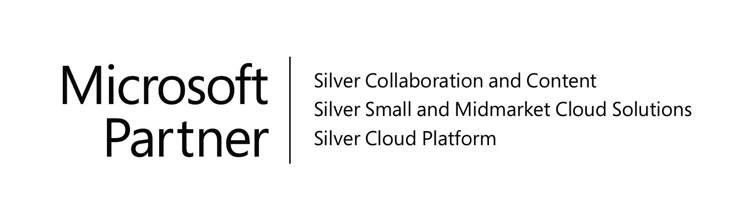 Virsage MS Silver Comp Logo